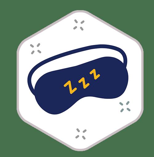 Sleep In Icon